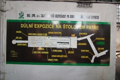 DSCF6317